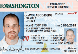 Type of Driver's Licenses in the USA