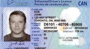 101 Canadian Drivers Licenses